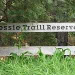 photo of Jessie Traill Reserve