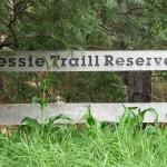 Jessie Traill Reserve
